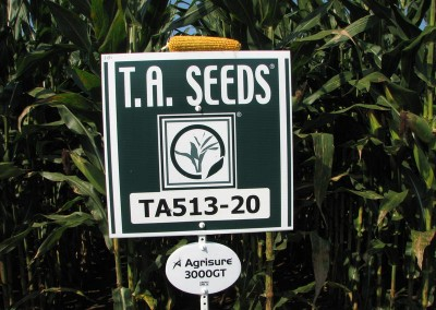 corn on top of sign close-up