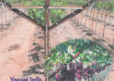 Vineyard Trellis Components
